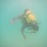 First Dive 007