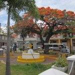 Town Square Nevis